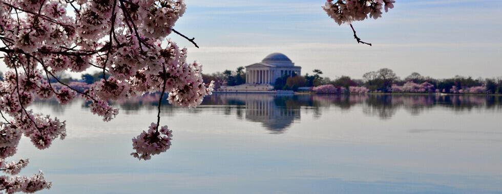 Washington DC Transportation